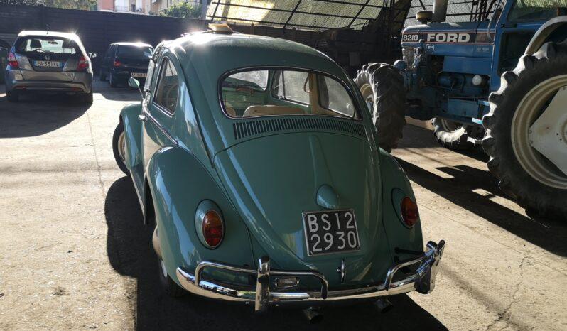 VW Maggiolino 1962 Turchis Blue completo