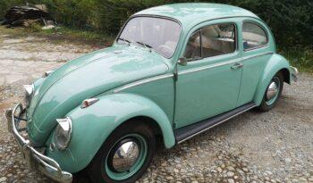 VW Maggiolino 1963 Turchis Blue completo